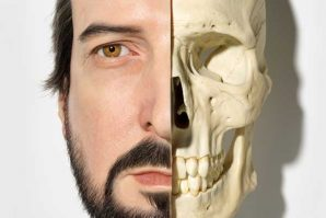 頭骨美學 Ballarat美術館呈獻Romancing the Skull